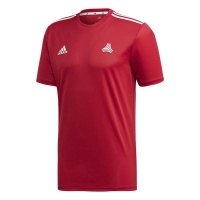 adidas Men's Matchwear Soccer Jersey Photo
