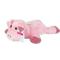 Cuddle Pig Photo
