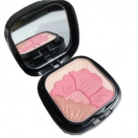 Petal Every Moment Powder Blush by Febble Photo