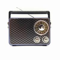 JRY FM/AM/SW 3 Band Radio with USB/TF/BT/AUX Speaker - Metallic Blue Photo