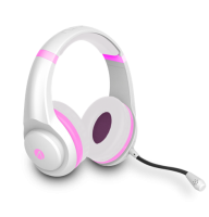 Stealth Icon Multiformat Stereo Gaming Headset Photo
