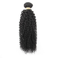 Beau Diva 10 inches Brazilian Kinky Curly Weave Single Bundle Photo