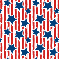 Gift Wrapping Paper 5m Roll - Stripes & Stars Photo