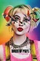 DC Comics Birds of Prey - Harley Quinn Poster Photo