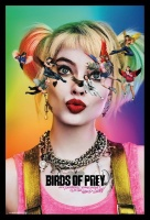 DC Comics Birds of Prey - Harley Quinn Poster with Black Frame Photo