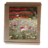 Seedleme Flowering Meadow Mix Seed Box - Create Your Own Flower Garden Meadow Photo