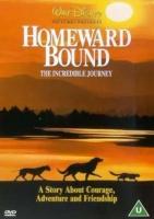 Homeward Bound - Photo