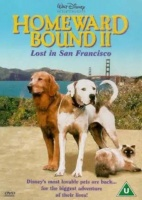 Homeward Bound 2 - Lost in San Francisco Photo