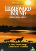 Homeward Bound - The Incredible Journey Photo