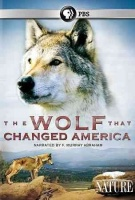 Nature:Wolf That Changed America Photo