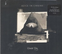 Alice In Chains - Rainier Fog Photo