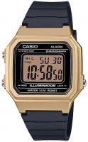 Casio Standard Collection Wrist Watch - Gold and Black Photo