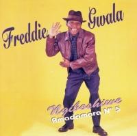 Freddie Gwala - Amadamara 5 - Ngiboshiwe Photo