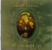 Sparklehorse - It's A Wonderful Life Photo