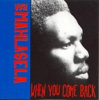 Vusi Mahlasela - When You Come Back Photo