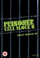 Prisoner Cell Block H: Volume 20 Photo