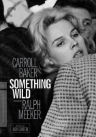 Something Wild Photo