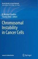 chromosomal instability in cancer cells B Michael Ghadimi