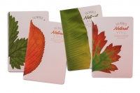 languo leaves a5 notebook set