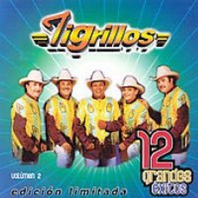 Photo of 12 Grandes Exitos Volumen 2