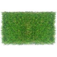 evergreen artificial grass 1 tone 25mm 200 x 700 pools hot tubs sauna