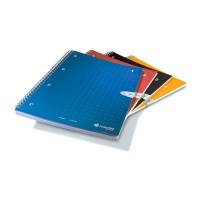 livescribe a4 lined notebooks 1 4 colors other