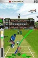freddie flintoffs power play cricket cartridge nds