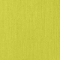 american crafts textured cardstock limeade 12x12 10 sheets craft supply