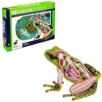 4d master animal anatomy frog learning toy