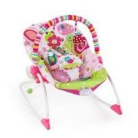 bright starts infant to toddler rocker raspberry garden pram stroller
