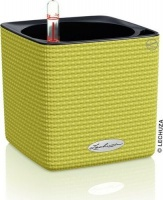 Lechuza Cube Color 14 Lime Green