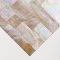 abalone natural raw shell inlay veneer 24 x 14cmm gold lip art supply