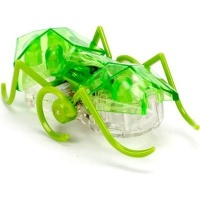 hexbug micro ant supplied colour may vary electronic toy