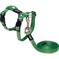 rogz catz kiddycat 8mm cat h harness and lead combination dog