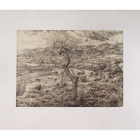 fabriano rosaspina printmaking paper 285gsm 70x50cm packof art supply