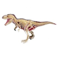 4d master animal anatomy t rex learning toy