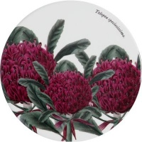 Maxwell and Williams Botanic Garden Round Coasters Telopia