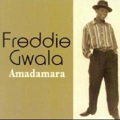 Photo of Gwala Freddie - Amadamara