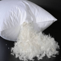 Relax Collection Feather Pillow by
