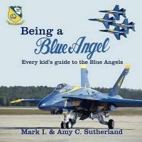 being a blue angel gps aviation marine