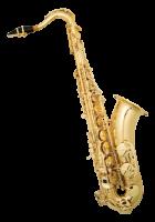 sonata tenor saxophone winjytse100g saxophone