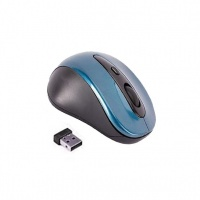 wireless mouse 2 blue 4gb