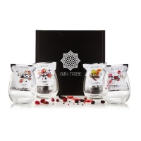 Gin Tribe Gift Box 1 Your Ultimate Gin Gift