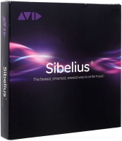 sibelius ultimate perpetual license finance accounting