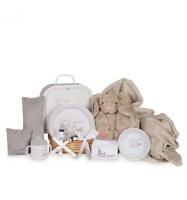 bebedeparis baby picnic gift basket gift set