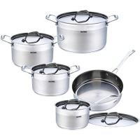 salitanz stainless steel cookware set 10 piece