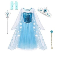 Frozen Glitter Dress with Accessories 3 5yrs