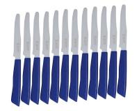 12 piece italian table knives blue hob