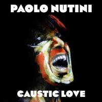 Imports Paolo Nutini Caustic Love