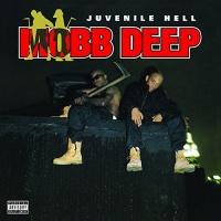mobb deep juvenile hell vinyl